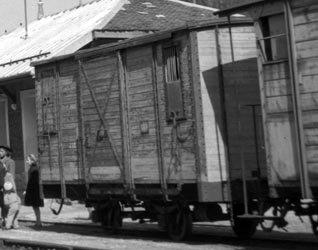 couvert-3-1901 manutention dans Vie de Lucien