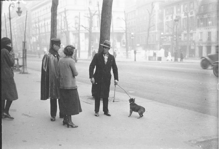 1924 : divagation des chiens dans Miscellanees fouriere-1932